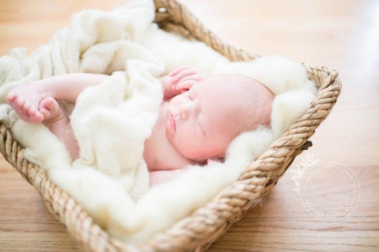 082018_LW_Newborn-20